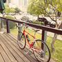 biker168