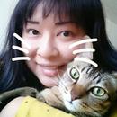 豹紋貓 圖像