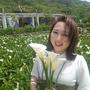 CottonFunBlog