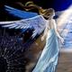 創作者 藍天使 的頭像