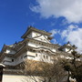 homachiko