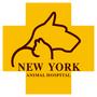 新竹紐約動物醫院