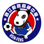 tainanfootball