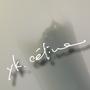 ykceline2008